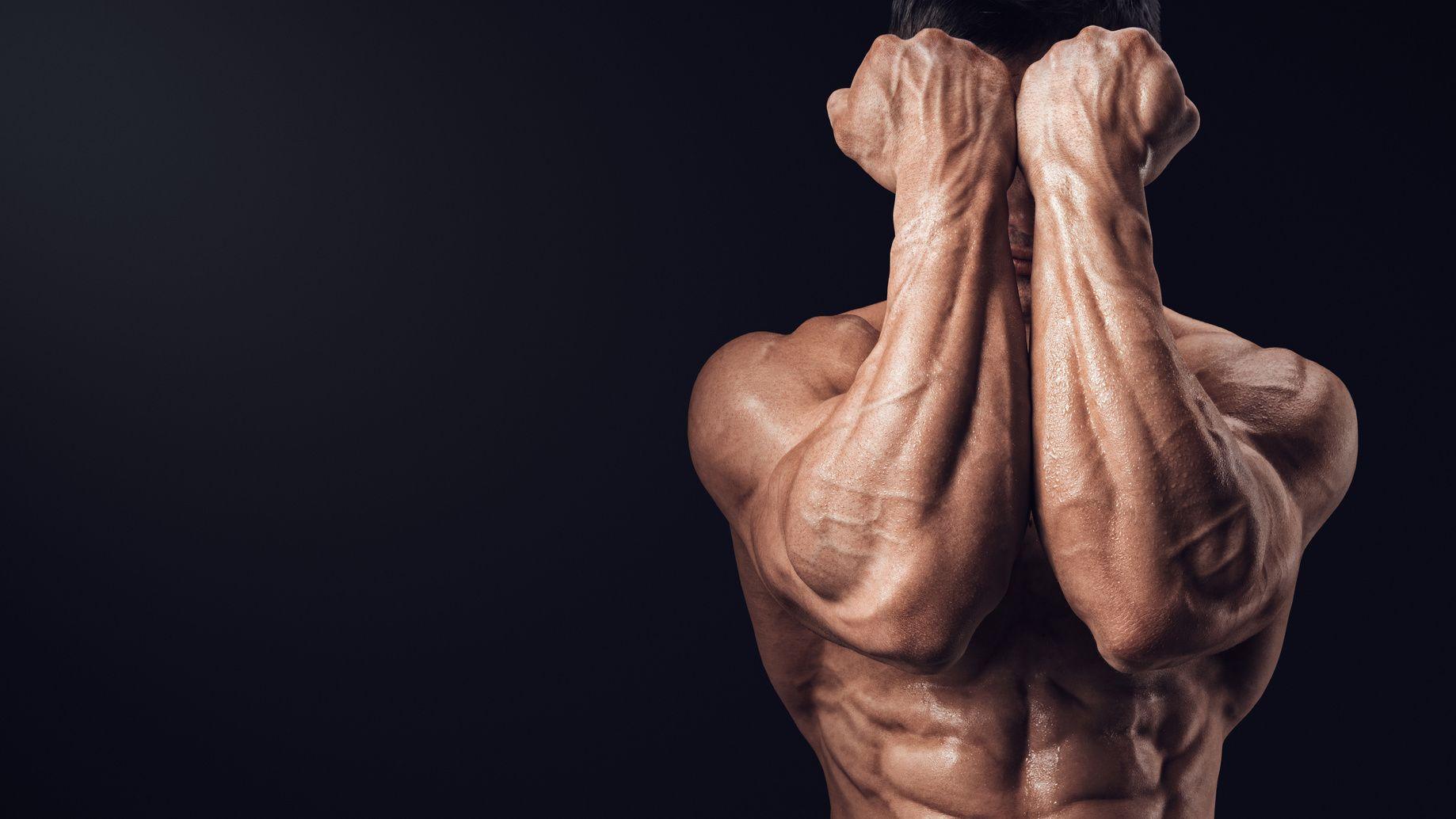 Как качать мышцы рук?